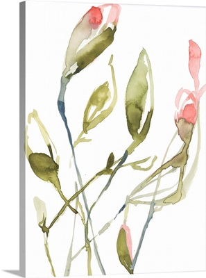 Coral Blooming Stems I