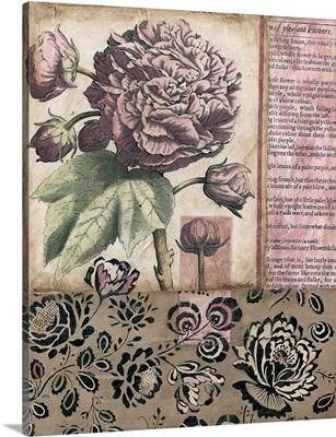 Cottage Rose I