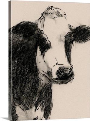 Cow Portrait Sketch I