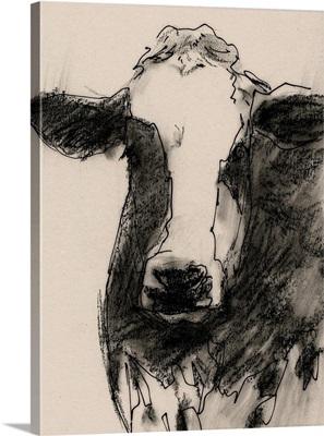 Cow Portrait Sketch II