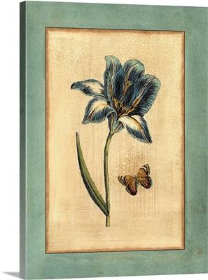 Crackled Spa Blue Tulip I