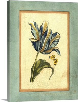 Crackled Spa Blue Tulip II