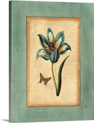 Crackled Spa Blue Tulip III