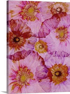 Crepe Paper Flowers II