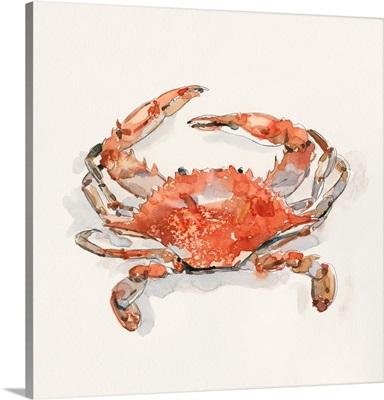 Crusty Crab II