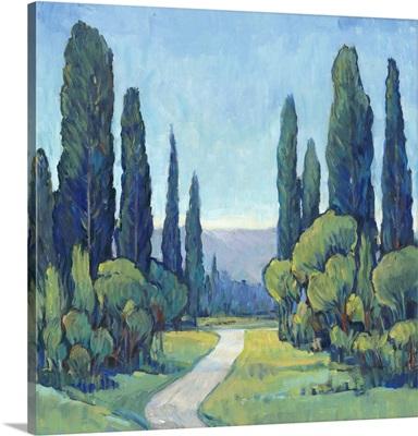 Cypress Path I