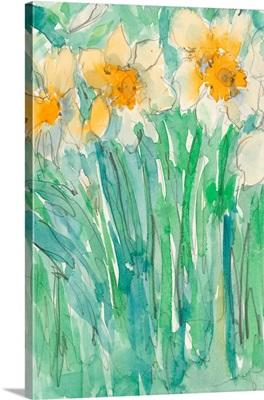 Daffodils Stems I