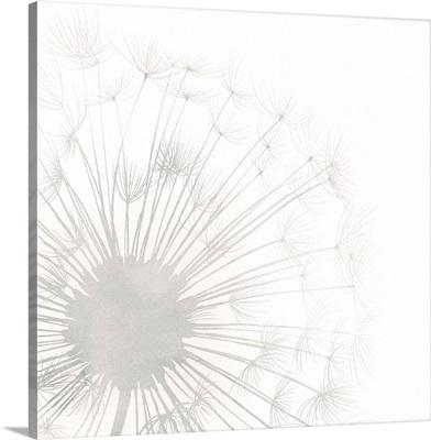 Dandelion Whisper I