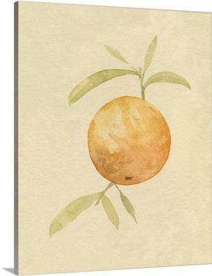 Dappled Oranges III