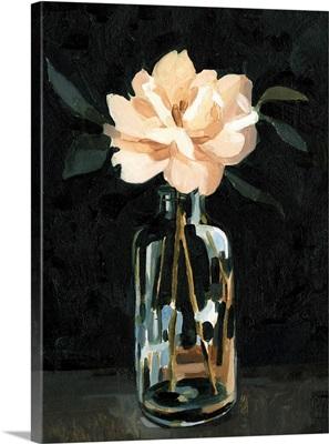 Dark Rose Arrangement I