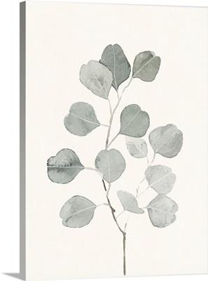 Delicate Sage Botanical I
