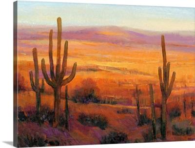 Desert Light II