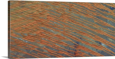 Desert Patterns II