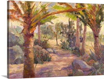 Desert Repose V