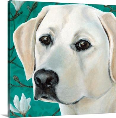 Dlynn's Dogs - Magnolia