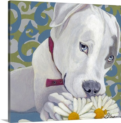 Dlynn's Dogs - Patch