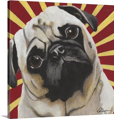 Dlynn's Dogs - Puggins