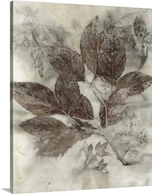 Dogwood Leaves II
