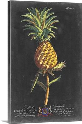 Dramatic Royal Botanical II