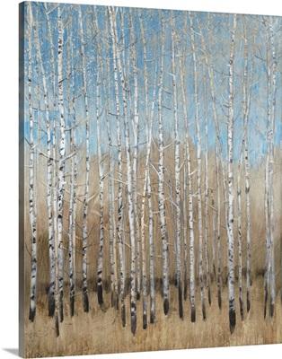 Dusty Blue Birches I