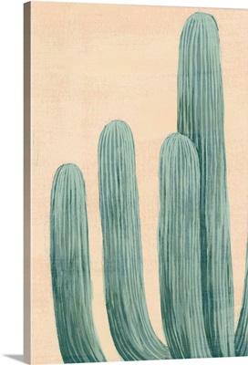 Dusty Cacti I