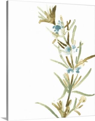 Earthtone Herbs III