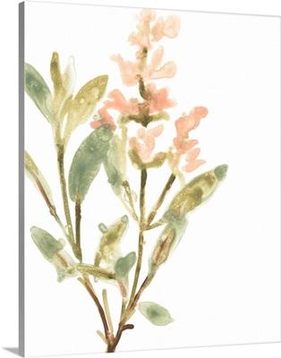 Earthtone Herbs IV