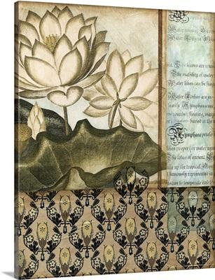 Elegant Water Lily II
