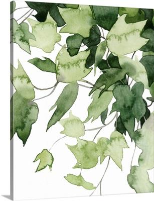 Emerald Vines II