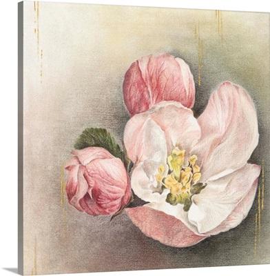 Enlightenment Blossom I