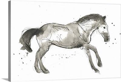 Equine Impressions I