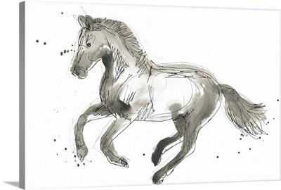 Equine Impressions II