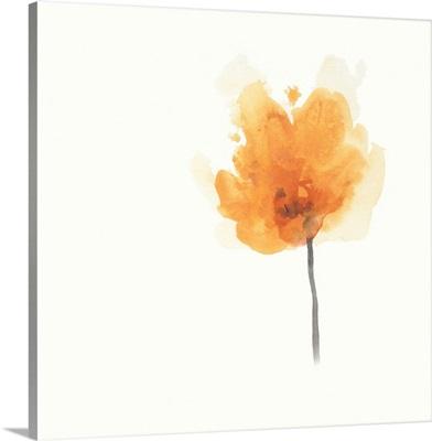 Expressive Blooms IX