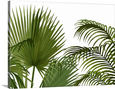 FabFunky Palm Collection A