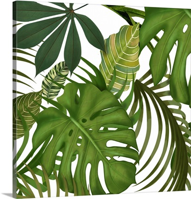 FabFunky Palm Collection D