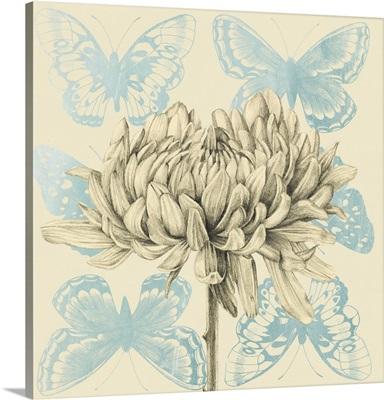 Fairyflies Collection A