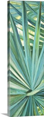 Fan Palm I