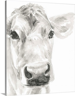 Farm Faces I