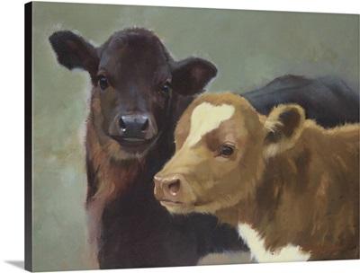 Farm Pals II
