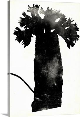 Fern Silhouette II