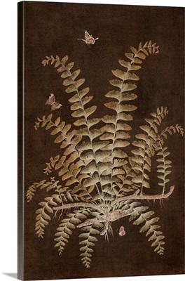 Ferns In Roasted Brown V