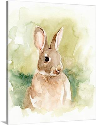 Field Bunny I