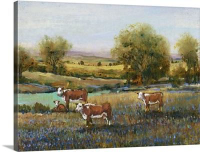 Field of Cattle II
