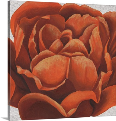Fiery Floral II