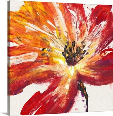 Fleur Rouge II