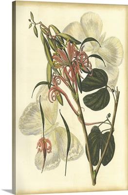 Floral Fantasia I