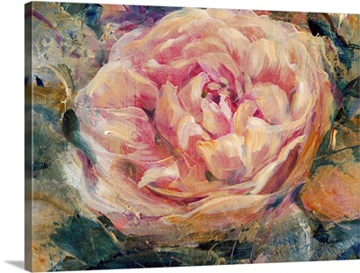 Floral in Bloom IV