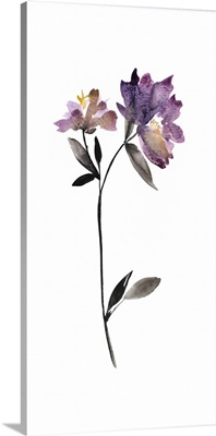 Floral Watercolor III