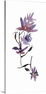 Floral Watercolor IV