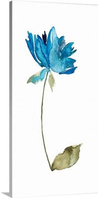 Floral Watercolor VI